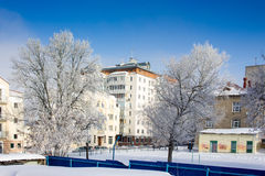 De winterstad met bomen. Stock Foto