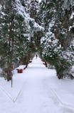 De wintersteeg met de lopende mens Royalty-vrije Stock Foto's