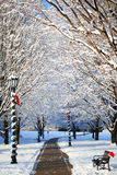De wintersteeg met Sneeuw Behandelde Bomen en Santa Hat op de Bank Royalty-vrije Stock Fotografie