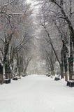 De wintersteeg in park Royalty-vrije Stock Fotografie