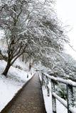 De winterstraat in Luxemburg Stock Foto