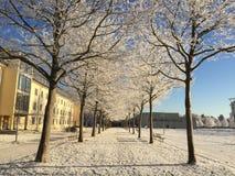 De wintertijd in Erfurt, Duitsland Royalty-vrije Stock Foto's