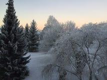 De wintertijd in Erfurt, Duitsland Stock Fotografie