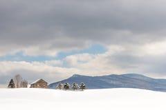 De wintertroost Royalty-vrije Stock Fotografie