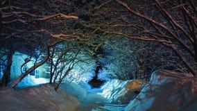De winterverhaal royalty-vrije stock fotografie