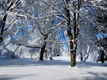 De winterverhaal 3 stock afbeelding