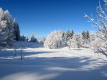 De winterverhaal 5 royalty-vrije stock afbeeldingen