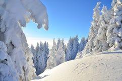 De winterverhaal op berg Stock Afbeelding