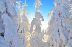 De winterverhaal op berg Royalty-vrije Stock Fotografie