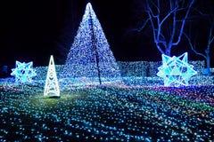 De winterverlichting met blauwe LEIDENE lichten Japan Stock Afbeelding
