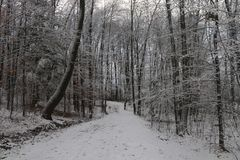 De wintervoorproef Royalty-vrije Stock Fotografie