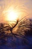 De wintervorst op de vensters Stock Afbeeldingen