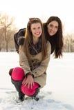 De wintervriendschap royalty-vrije stock afbeeldingen