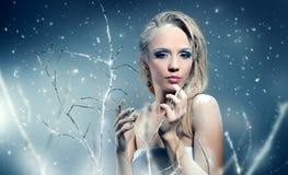 De wintervrouw met mooie samenstelling Stock Foto