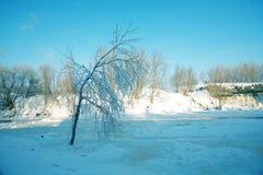 De winterwaterval Stock Foto