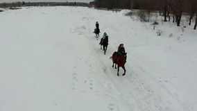 De winterweer Een groep jonge vrouwen die paarden berijden op een sneeuwgebied stock videobeelden