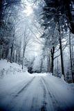 De winterweg Stock Afbeelding