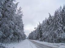De winterweg Stock Foto