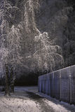 De winterweg Royalty-vrije Stock Foto
