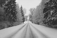 De winterweg aan het huis Stock Foto