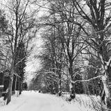 De winterweg aan huis stock foto