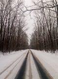 De winterweg aan nergens stock fotografie