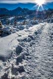 De winterweg in de bergen bij dageraad Royalty-vrije Stock Fotografie
