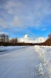 De winterweg in diep bos Royalty-vrije Stock Foto's