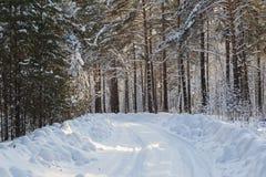De winterweg in het bos ergens in Siberië Royalty-vrije Stock Foto's