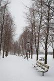 De winterweg in het Park Stock Afbeelding