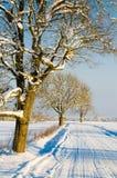 De winterweg in het platteland, een de winterdag Royalty-vrije Stock Foto's
