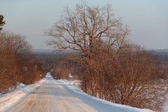 De winterweg in de middag royalty-vrije stock afbeelding