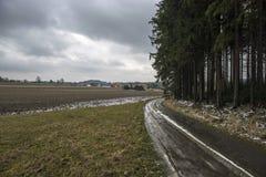 De winterweg rond het bos Stock Afbeeldingen