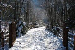 De winterweg van de berg stock foto