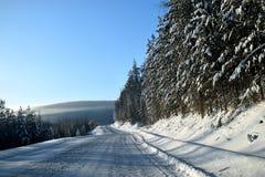 De winterweg van het de winterlandschap aan Siberië stock foto's