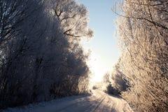 De winterweg in de vroege ochtend stock afbeelding