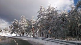 De winterwegen Stock Afbeelding