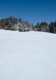 De winterweide en bos Royalty-vrije Stock Foto's