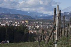 De winterwijngaard over de Stad Royalty-vrije Stock Fotografie