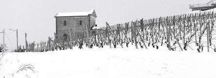 De winterwijngaarden met oude kerk De Zwart-witte foto van Peking, China Stock Fotografie