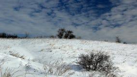 De winterwoestijn Stock Afbeelding