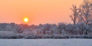 De winterzonsondergang Royalty-vrije Stock Afbeeldingen
