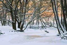 De winterzonsondergang Royalty-vrije Stock Foto