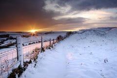 De winterzonsondergang Stock Fotografie