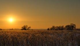 De winterzonsondergang in de voorsteden Rusland stock afbeeldingen