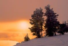 De winterzonsopgang Stock Fotografie
