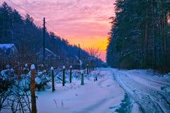 De winterzonsopgang Stock Foto