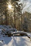 De winterzonsopgang Royalty-vrije Stock Afbeelding