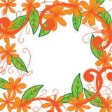 De witte achtergrond van het bloemkader Stock Fotografie