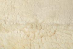 De witte achtergrond van het schapenbont Royalty-vrije Stock Afbeelding